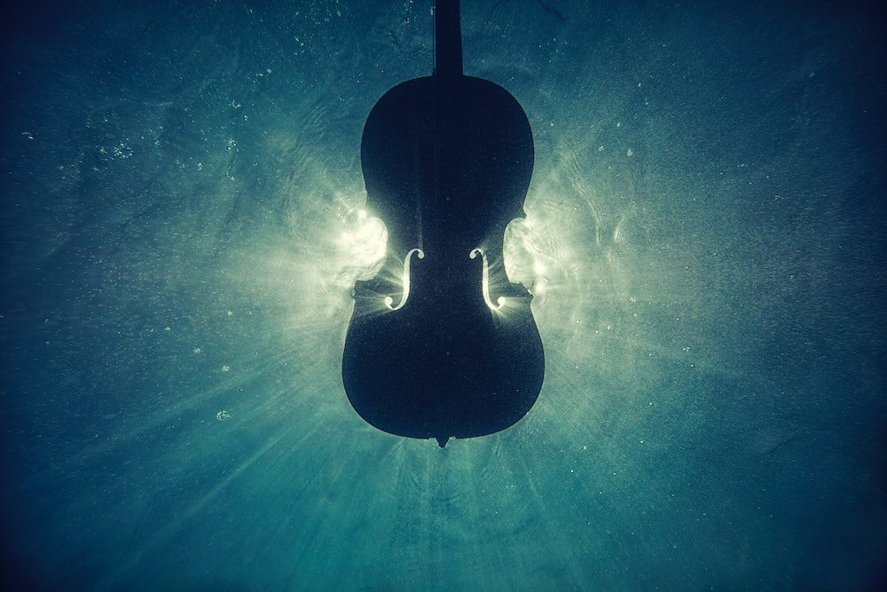 Strings Are Awesome - josep molina secall black violin on underwater for unsplash