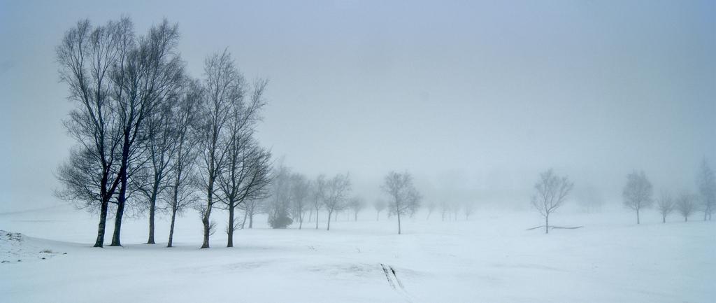 Golf Course In The Fog Simon Harrod Flickr